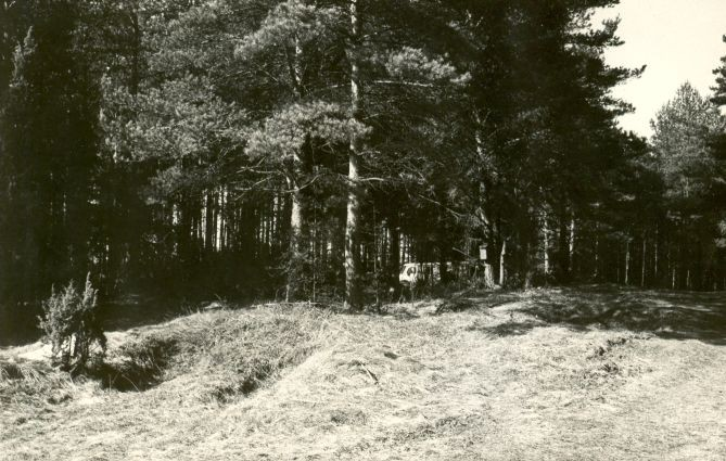 Maa-alune kalmistu - kagust. Foto: E. Väljal.
