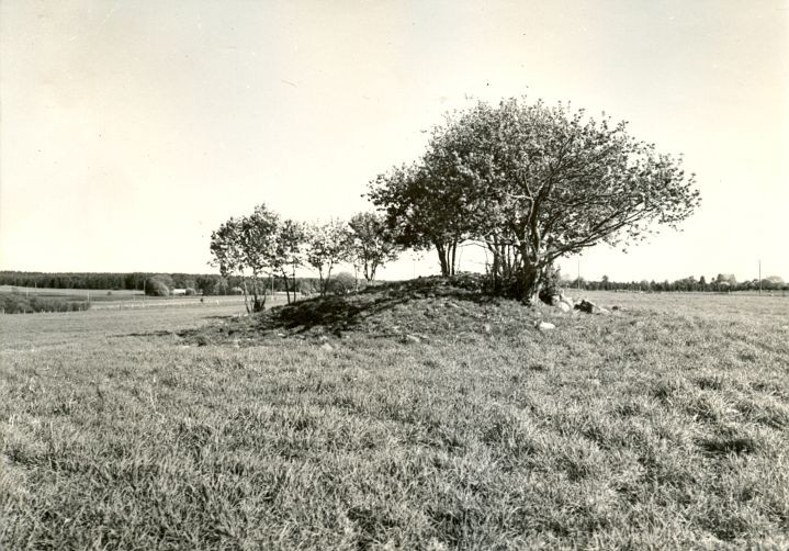 Kivikalme - läänest, R. Kärner, 8.mai 1990