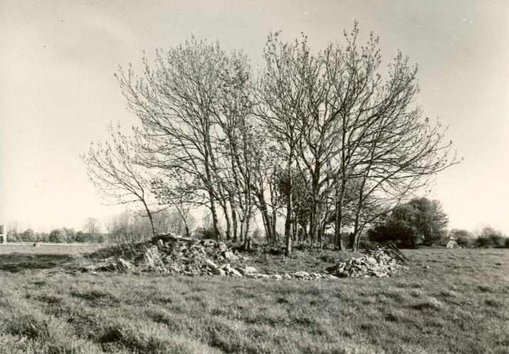 Kivikalmed 18438(taga)-18439(ees) - põhjast