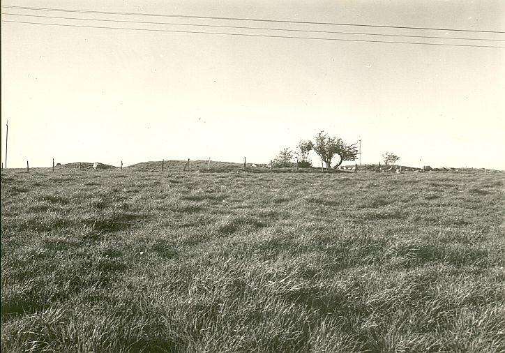 Kivikalmed 18463-18465, R. Kärner, 4.mai 1990