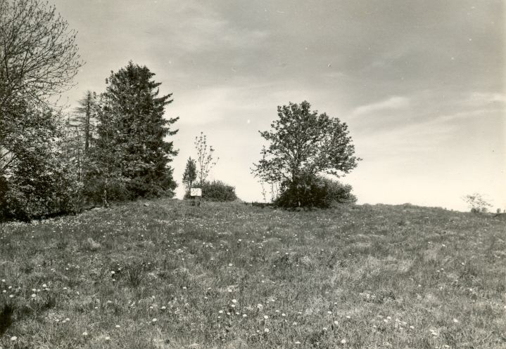 Kivikalme - lõunast, R. Kärner, 4.mai 1990