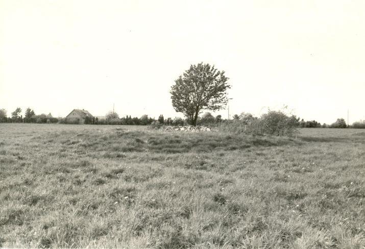 Kivikalme - lõuna-kagust, R. Kärner, 8.mai 1990