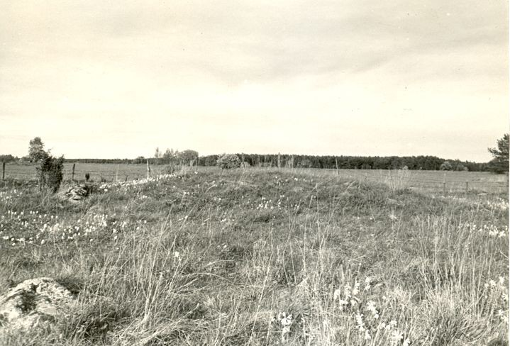 Kivikalme - edelast, R. Kärner, 8.mai 1990