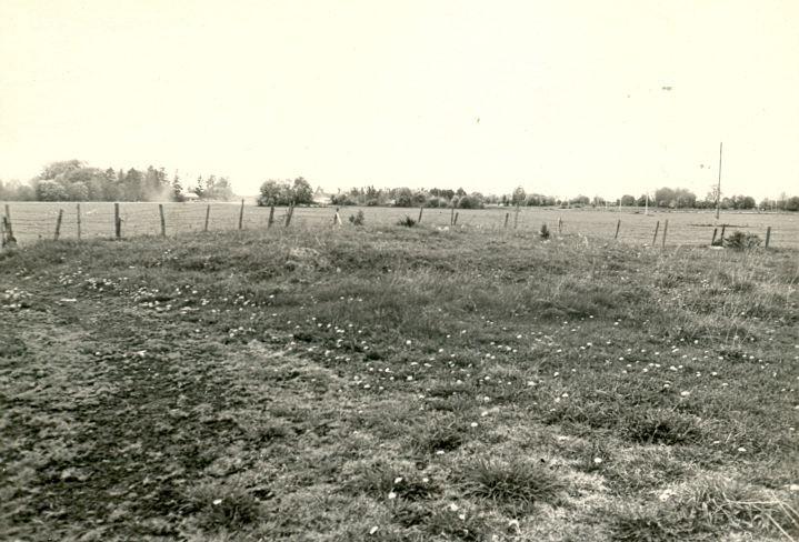 Kivikalme - kagust, R. Kärner, 8.mai 1990