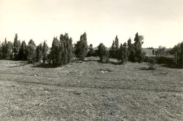 Muistsed põllud - edelast. Foto: R. Kärner, 08.05.1990.