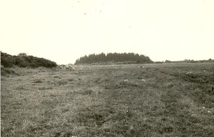 Hiiemets. Foto: H. Joonuks, 1976.