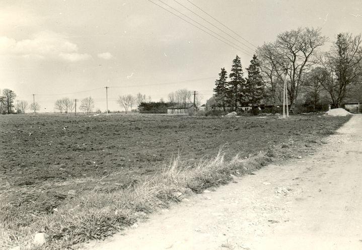 Asulakoht - kagust, R. Kärner, 27.apr.1990