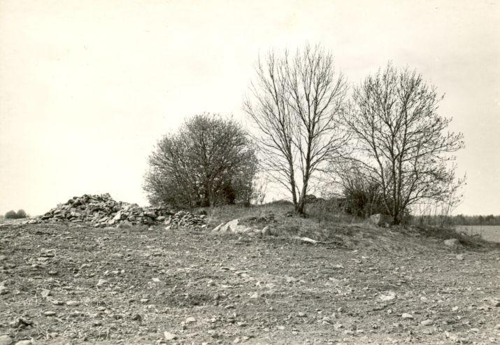 Kivikalme - kagust, R. Kärner, 27.apr.1990
