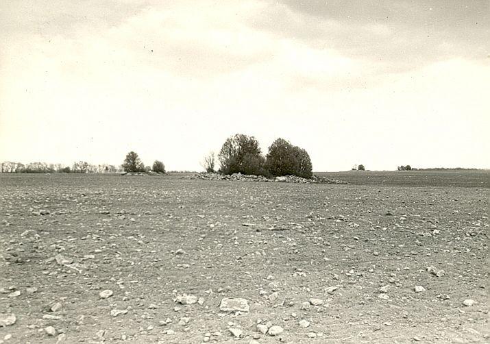 Kivikalmed 18517-18519