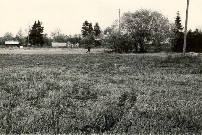 Asulakoht - kagust, E. Väljal, 11.okt.1984