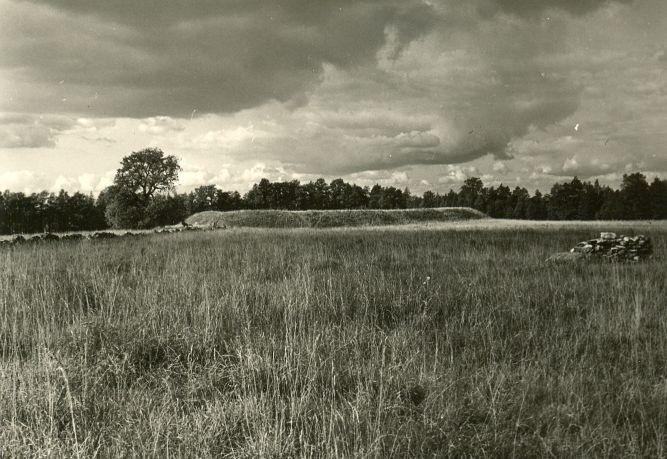 Linnamägi. Foto: A. Sillasoo, 23.08.1976.