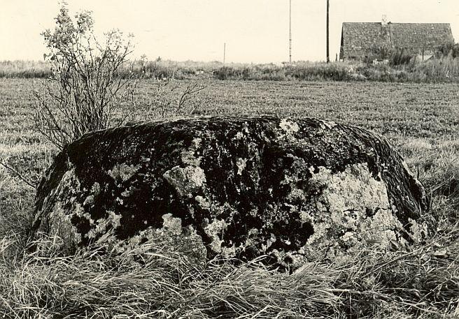 Kultusekivi - edelast, E. Väljal, 3.sept.1984
