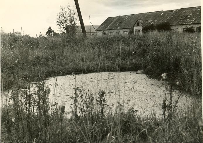 Ohvriallikas. Foto: A. Sillasoo, 29.09.1976.