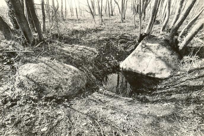 Hiiekoht, ohvriallikas, ohvrikivid - edelast. Foto: M. Pakler, 06.05.1987.