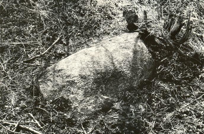 Ohvrikivi - idast. Foto: M. Pakler, 06.05.1987.