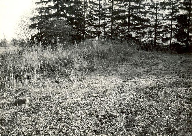 Kivikalme - läänest, E. Väljal, 24.okt.1988