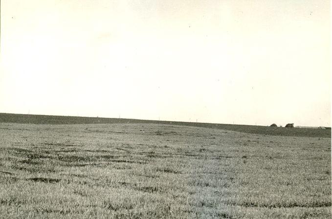 Asulakoht - kagust. Foto: O. Multer, 30. mai 1986.
