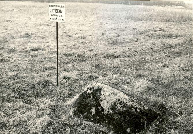 Kivikalmed 18844-18845 lõunapoolne kultusekivi - põhjast, E. Väljal, 1980ndad