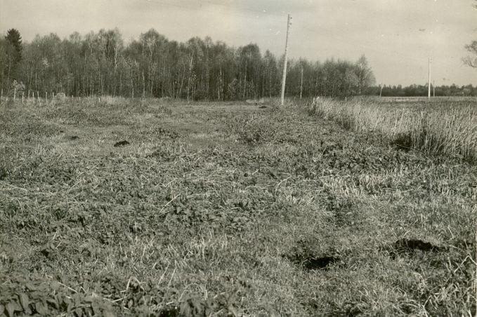 Asulakoht - põhjast, O.Multer, 14.okt.1986