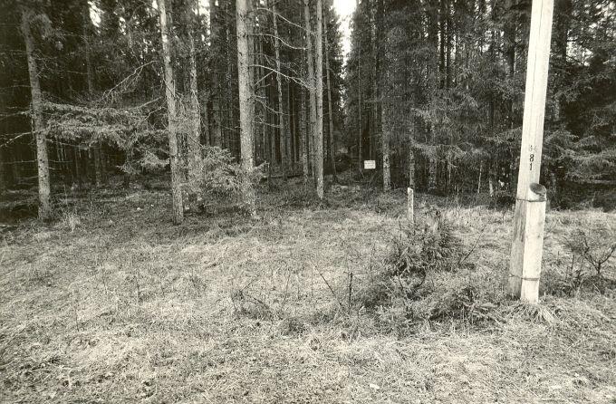 Maa-alune kalmistu - läänest. Foto: M. Pakler, 07.05.1987.
