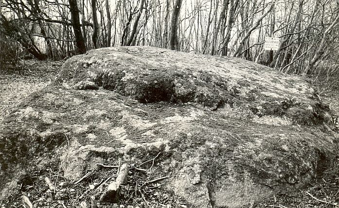 Kultusekivi - kirdest, E. Väljal, 23.apr.1985