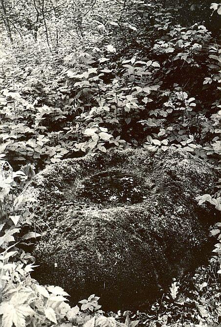 Ohvrikivi - loodest. Foto: E. Väljal, 23.04.1987.