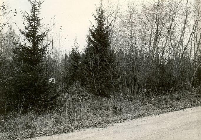 Lahingupaik - edelast. Foto: E. Väljal, 25.10.1987.