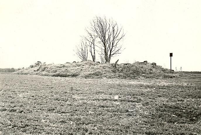 Kivikalme. Foto: A. Sillasoo, kevad 1976.