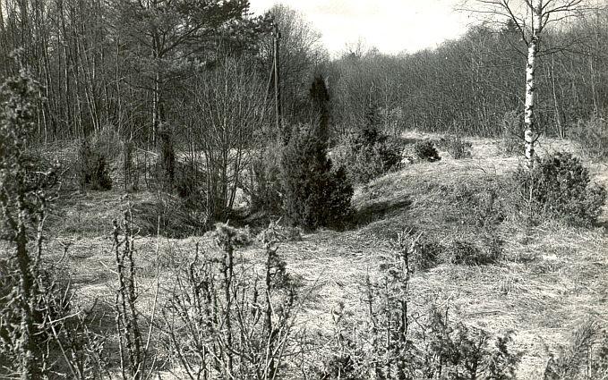 Maa-alune kalmistu - idast. Foto: E. Väljal, 1980ndad aastad.