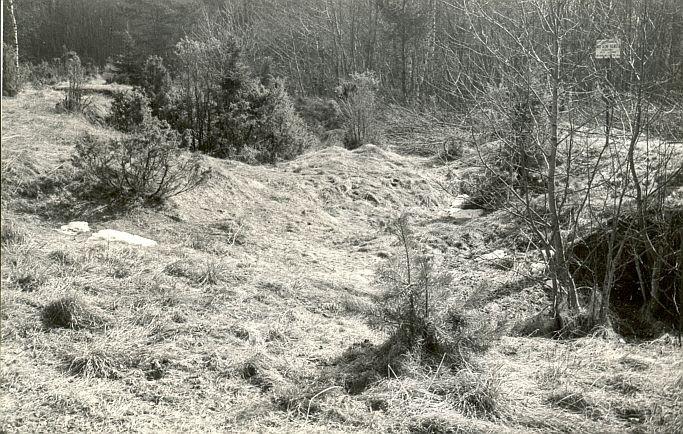 Maa-alune kalmistu - läänest. Foto: E. Väljal, 1980ndad aastad.