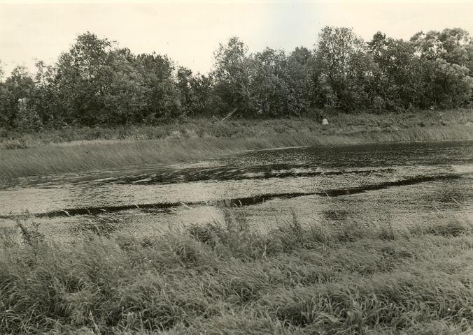 Muistse silla jäänused. Foto: A. Sillasoo, 23.08.1976.