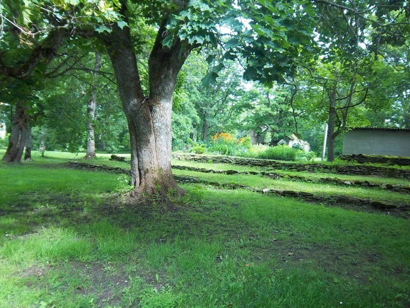 Maidla mõisa pargi vaade (taustal mõisa kuivati). K. Klandorf 24.07.2012