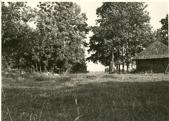 Kivikalme. Foto: A. Sillasoo, 24.08.1976.