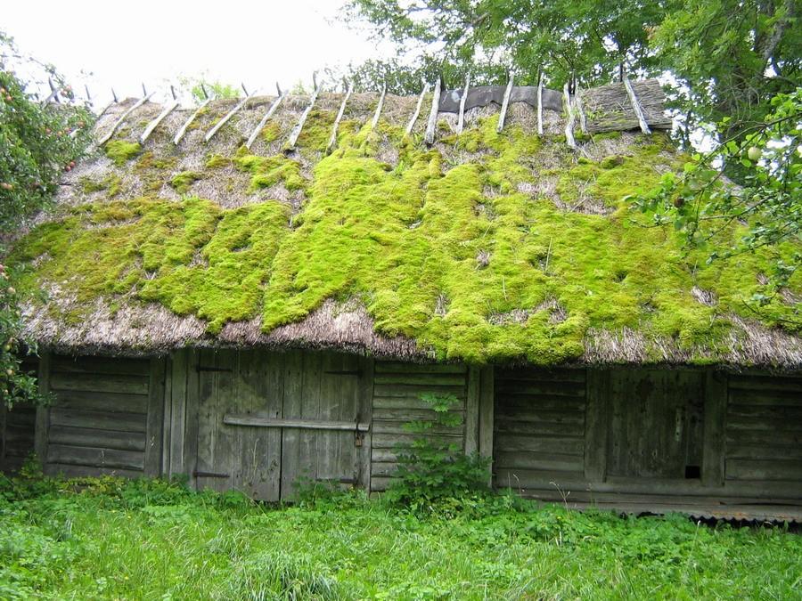 Riideait eest (Läänekülg)  Autor Kalli Pets  Kuupäev  06.09.2007