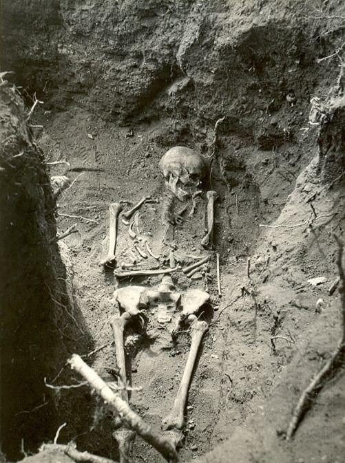 Maa-aluse kalmistu luustik - idast. Foto: M. Aun, 1974.