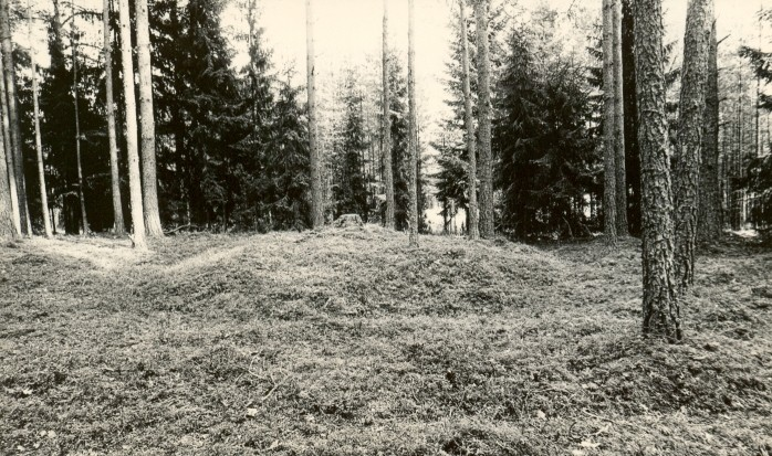 Kääbaskalmistu reg nr 11218-11227. Foto: M. Pakler, september 1975.