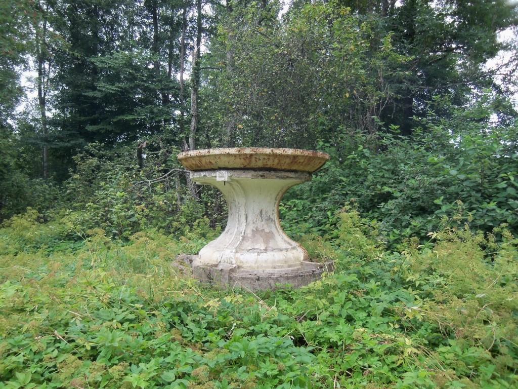 Pargivaas peahoone ja paistiigi vahelisel alal. Foto Silja Konsa 15.06.2012
