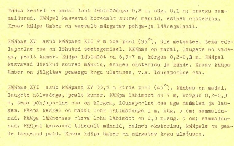 pass - 4-p (Täielik pass on mälestis nr 11392 juures.)