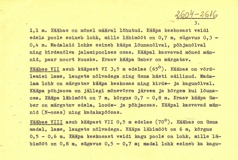 Pass - 3 (Täielik pass on mälestis nr 11483 juures.)