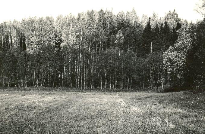 Linnus - kagus. Foto: E. Väljal, 05.10.1984.