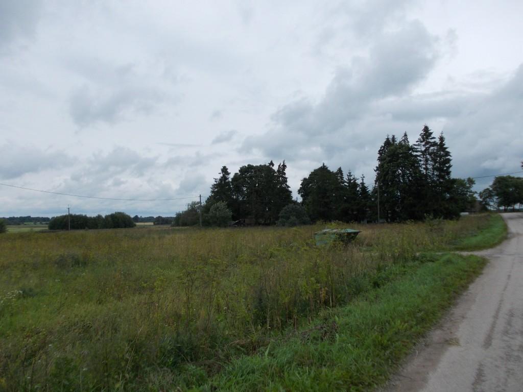 Vaade asulakohale lõunast. Foto: Ulla Kadakas, 07.08.2012.