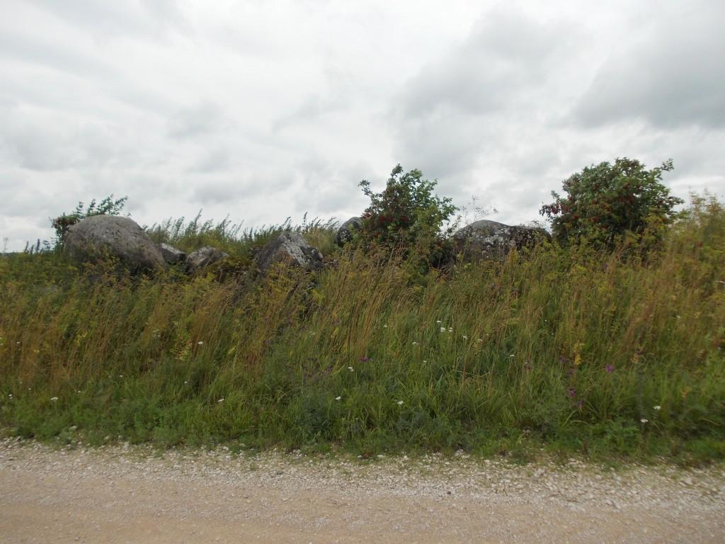 Kivihunnik, kus lohukivi asub. Vaade tee pealt (lõunast). Foto: Ulla Kadakas, 07.08.2012.
