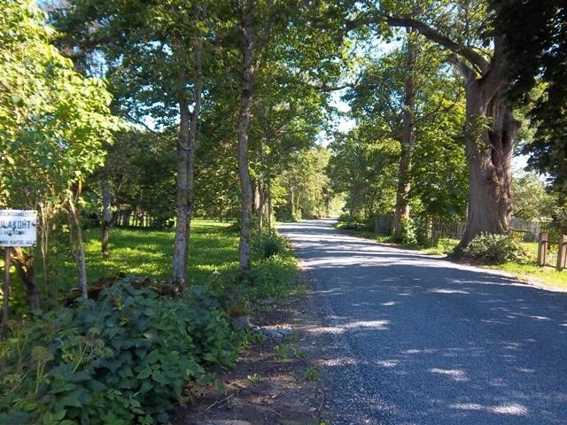 Vaade asulakohta reg nr 12054 läbivale teele läänesuunast. Foto: K. Klandorf, 30.08.2012.