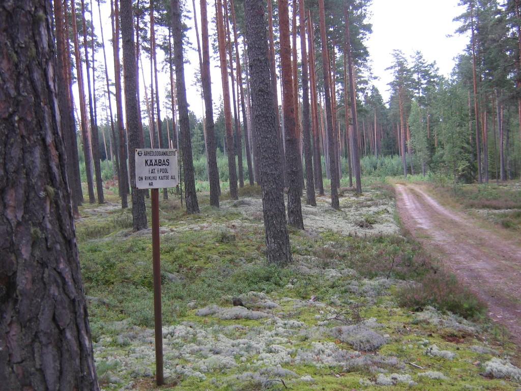 Tähise tagant algab pikk kääbas, pikkus 33 m. Foto: Viktor Lõhmus, 29.08.2012.
