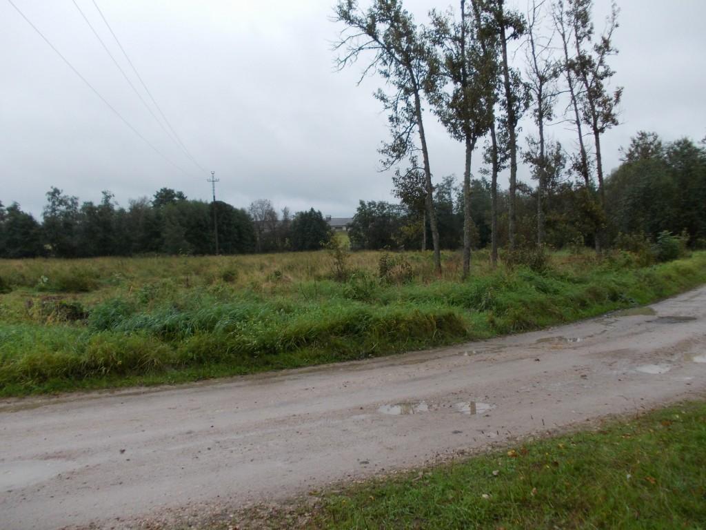 Vaade mälestise keskel ida suunas. Foto: Ulla Kadakas, 01.09.2012.