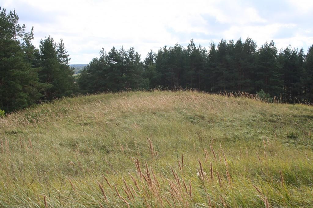Vaade linnuse õuealale loodevallilt. Foto: Karin Vimberg, 04.09.2012.