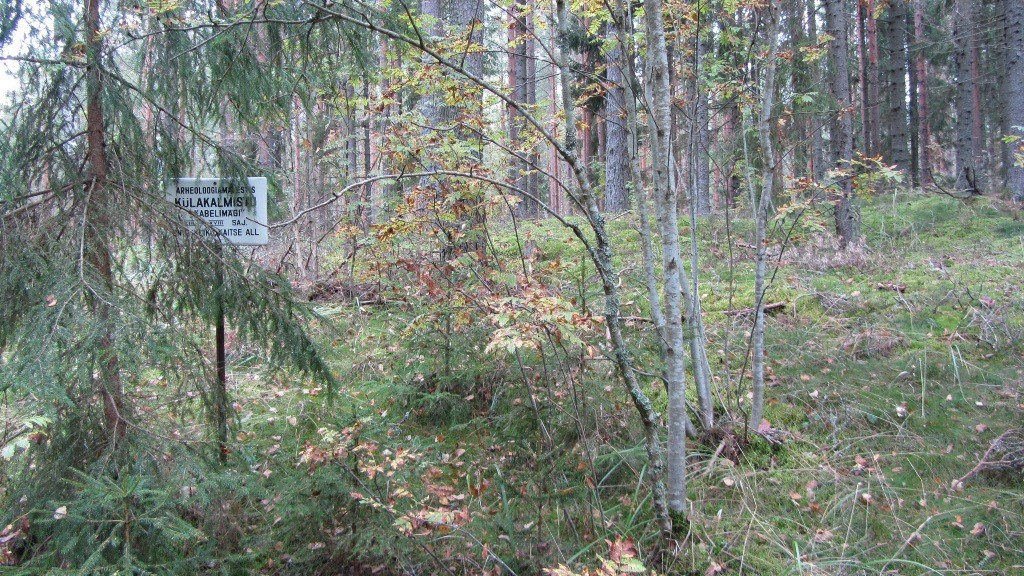 """Vaade kalmistule """"Kabelimägi"""" reg nr 13025 kagust. Foto: Karin Vimberg, 13.09.2012."""