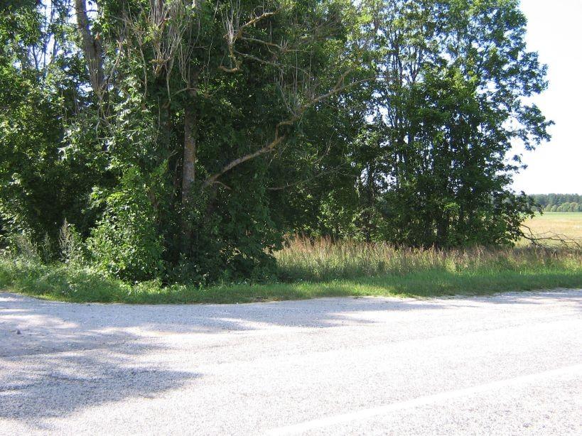 Vaade suurelt maanteelt põhjapoolse tee otsale  Autor Ulla Kadakas  Kuupäev  06.08.2007