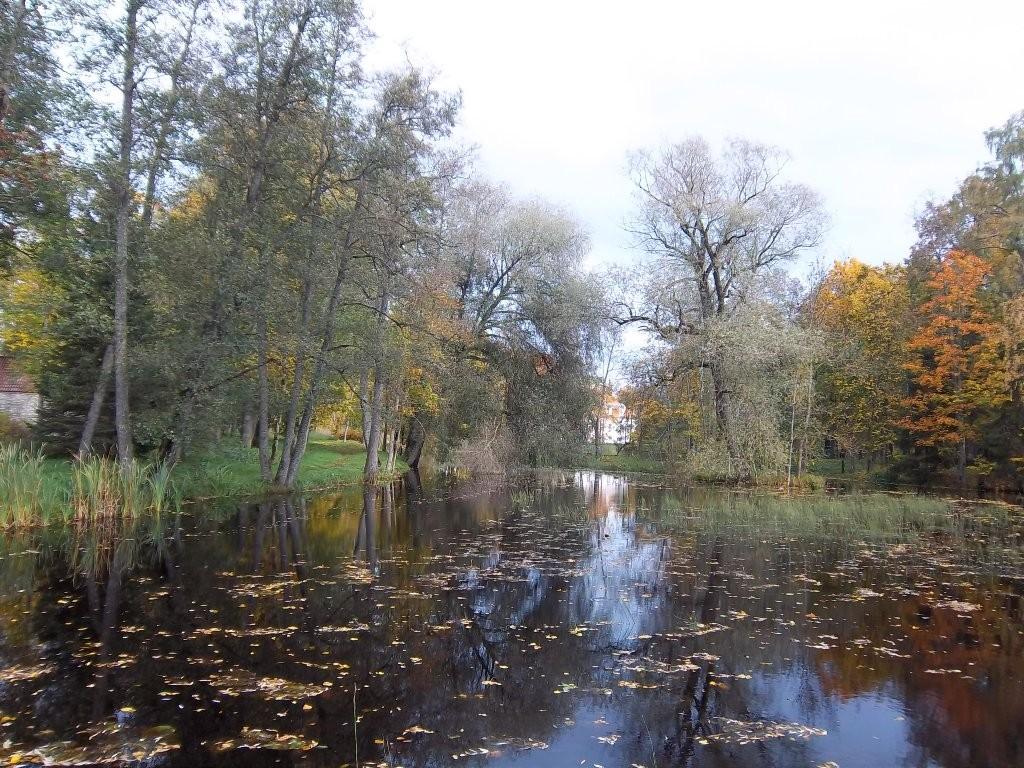 Ingliste mõisa park, vaade jõeärsele jalutusrajale lõunasuunast. K. Klandorf 04.10.2012.