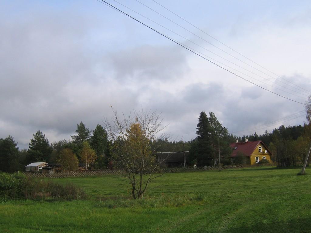 Vaade asulapaigale Tamme külas. Foto: Viktor Lõhmus, 12.10.2012.